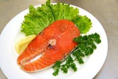 Palo dei pesci Immagini Stock