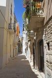 Palo del Colle Oldtown. Apulia. stock foto