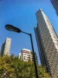 Palo della luce, alberi e grattacieli Fotografie Stock Libere da Diritti