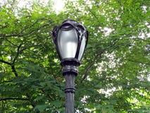 Palo della luce del Central Park Immagini Stock