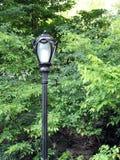 Palo della luce del Central Park Immagine Stock Libera da Diritti