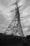 Palo di elettricità disposto su terreno coltivabile Fotografia Stock Libera da Diritti
