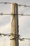 Palo di legno con un cavo spinoso. Immagine Stock Libera da Diritti
