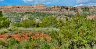 Palo Dura Canyon State Park Tejas Imagen de archivo libre de regalías