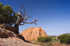 Palo Duro Canyon. Sandstone formations in Palo Duro Canyon State Park in Texas Stock Photos