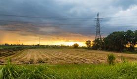 Palo e risaie ad alta tensione sul tramonto Fotografia Stock Libera da Diritti