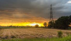 Palo e risaie ad alta tensione sul tramonto Fotografie Stock Libere da Diritti