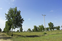 Palo elettrico e Pthway con bello Landscpae sotto il blu Fotografie Stock Libere da Diritti