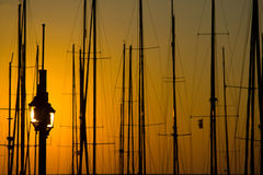 Palo en la puesta del sol Imagen de archivo