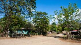 Palo Verde parka narodowego przyroda Fotografia Royalty Free