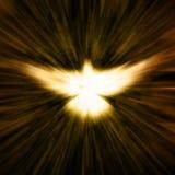 Paloma cristiana Imágenes de archivo libres de regalías