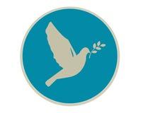 Paloma de la paz Imagenes de archivo