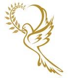 Paloma de la paz Foto de archivo libre de regalías
