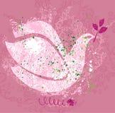 Paloma de la paz. Foto de archivo