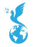 Paloma de la paz fotografía de archivo libre de regalías