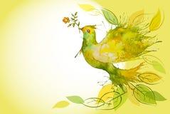 Paloma del verde que vuela - fondo horizontal Fotografía de archivo libre de regalías