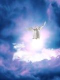 Paloma en cielo fotografía de archivo