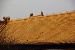 Paloma en el tejado del palacio Foto de archivo