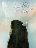Paloma en un acantilado libre illustration