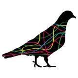 paloma Ilustración colorida del vector Foto de archivo libre de regalías