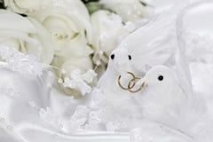 Palomas blancas con los anillos de bodas Imágenes de archivo libres de regalías