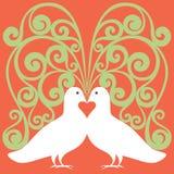 Palomas blancas en amor con el corazón rojo Fotografía de archivo libre de regalías