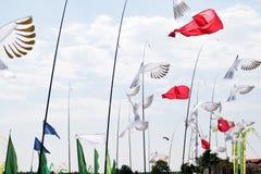 Palomas blancas y flores rojas que soplan en el viento en el festival de la cometa en el geeste Alemania del mar del almacenamien imagenes de archivo