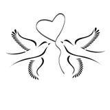 Palomas con el corazón Fotografía de archivo
