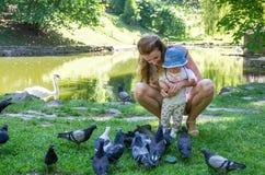 Palomas de alimentación de la mamá y de la hija en un parque en el lago Imágenes de archivo libres de regalías