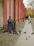 Palomas de alimentación de la mujer, St Petersburg Fotografía de archivo libre de regalías