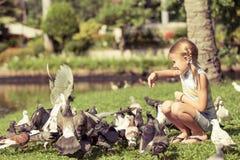 Palomas de alimentación de la niña en el parque Imágenes de archivo libres de regalías