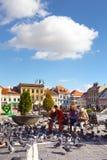 Palomas de alimentación de la familia en una plaza principal de la ciudad rumana Brasov Imagenes de archivo
