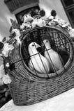 Palomas de la boda Imágenes de archivo libres de regalías