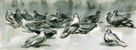 Palomas de la tinta Foto de archivo