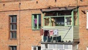 Palomas que pasan corriendo alrededor en el balcón de una construcción de viviendas vieja del ladrillo metrajes