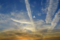 Palomas que vuelan, cielo azul, nubes blancas Fotos de archivo