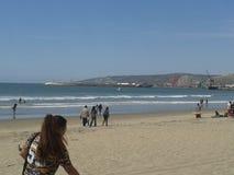 Palomas que vuelan gaviota y pelícanos sobre el cielo azul del mar del rompeolas de la explanada de la playa de Ensenada de las o Foto de archivo