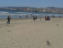 Palomas que vuelan gaviota y pelícanos sobre el cielo azul del mar del rompeolas de la explanada de la playa de Ensenada de las o Imagenes de archivo