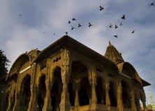 Palomas que vuelan sobre palacio indio Foto de archivo