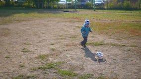 Palomas y miradas de la caza del niño pequeño muy felices metrajes