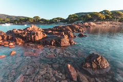 Palombaggia beach in Corsica, France royalty free stock photography