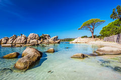 Palombaggia beach, Corsica, France, Europe. Stock Images