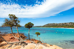 Palombaggia beach in Corsica Island in France Stock Photo
