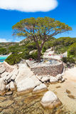 Palombaggia beach in Corsica Island in France Stock Images