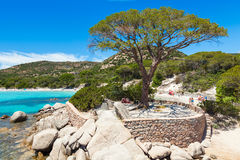 Palombaggia beach in Corsica Island in France Royalty Free Stock Photo