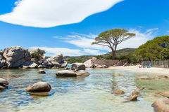 Palombaggia beach in Corsica Island in France Stock Image