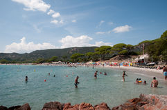 Palombaggia beach. Porto-Vecchio, Corsica/ France 2014 Royalty Free Stock Images
