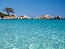 Palombaggia beach. In the south of Corsica is famous for its crystal clear water Royalty Free Stock Images