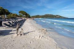 Palombaggia plaża w południowym Corsica Obraz Stock