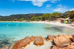Palombaggia plaża w Corsica wyspie w Francja Zdjęcie Stock